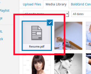 Choose your PDF file