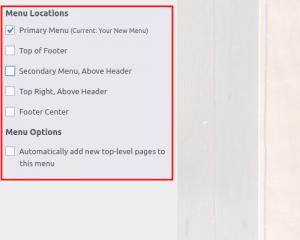 Assign menu location